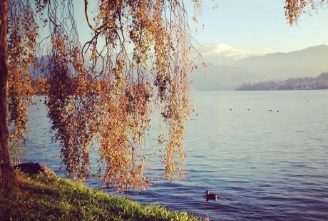 Beautiful Lucerne.